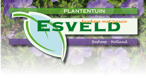 plantentuin_bovenbalk