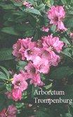 Rhododendron ririei